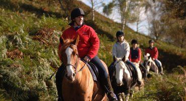 Rockwood Riding Centre